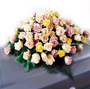 Cojin de rosas mixtas seleccionadas