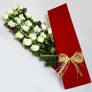 Caja roja de rosas blancas