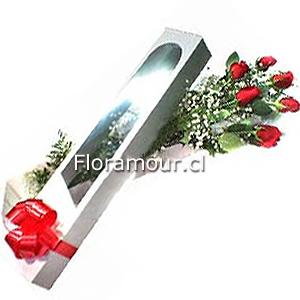 Caja con visor y media docena de rosas ecuatorianas
