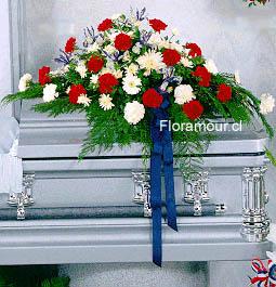 Ovalo Fúnebre de claveles y pompones.