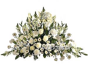 Ovalo Fúnebre de Rosas, Marmolitos y complementos
