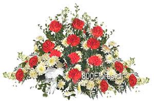 Ovalo fúnebre de Claveles y crisantemos tipo margarita.